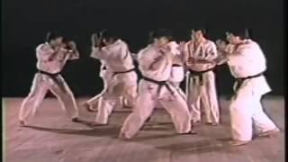 大山 茂(おおやま しげる、1936年7月7日 - )は、日本の空手家。国際大...