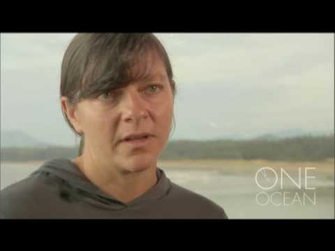 Debby Ianson, Ocean Climate Modeller
