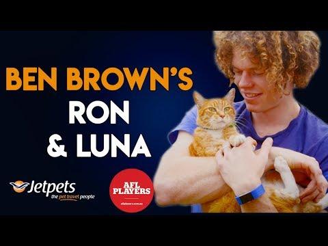 Pet Pals – Cat crazy Ben Brown with Ron & Luna