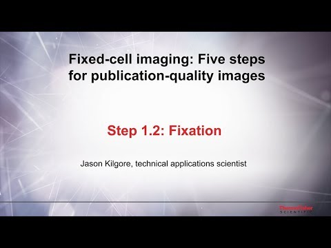 1.2 Fixation–Fixed Cell Imaging: 5 Steps For Publication-quality Images