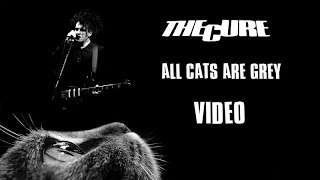 The Cure - All cats are grey