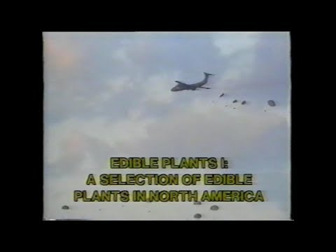 Edible Plants 1: A Selection of Edible Plants in North America | US Army Vintage Film