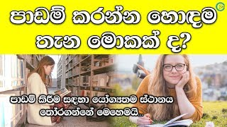 What is the Most Suitable Place for Study | Shanethya TV