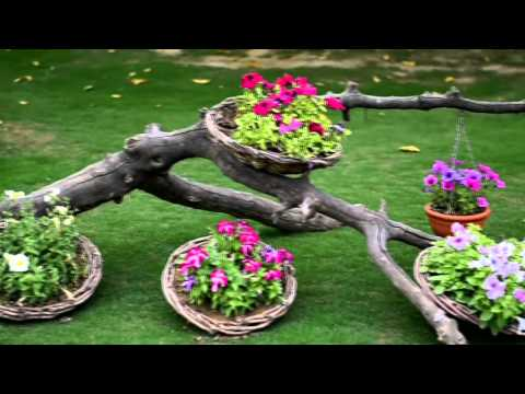 My Beautiful Garden & Lovely Roses - Youtube