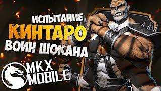 ИСПЫТАНИЕ КИНТАРО ВОИН ШОКАНА • Mortal Kombat X Mobile