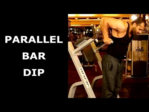 PARALLEL BAR DIP TO GET DEFINED TRICEPS