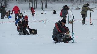 Чемпионат Тульской области по ловле на мормышку со льда январь 2016