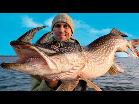 11 CRAZIEST Things Ever Caught!