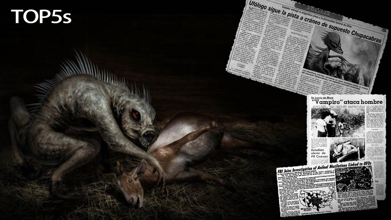 5-nightmarish-facts-about-the-mysterious-legendary-chupacabra