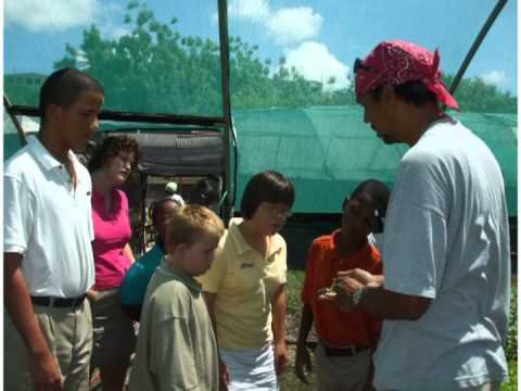 Special Kids Inc. School House for Special Needs Children in Barbados