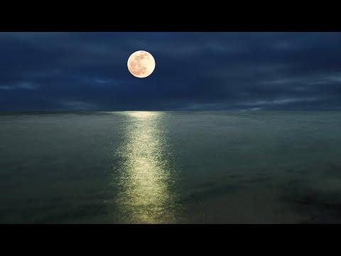 Deep Sleep Music 24/7, Sleeping Music, Relaxing Music, Sleep Meditation, Calming Music, Sleep Music