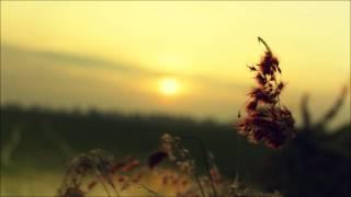▶ Flukes - Wifey Riddim (Instrumental)(HQ)