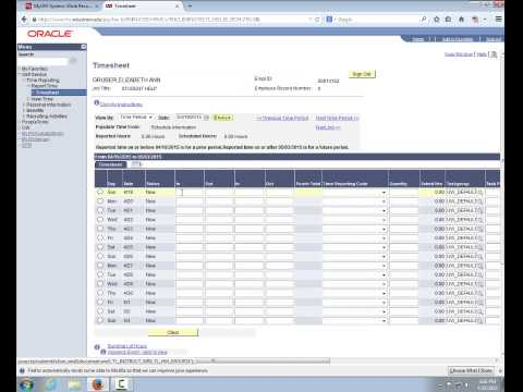 Lesson 1 Electronic Timesheet Overview