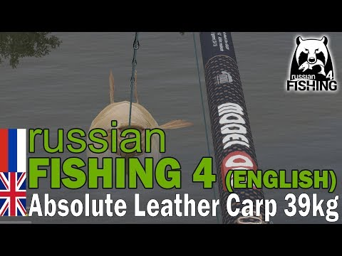 Russian Fishing 4 ENGLISH - Absolute Record - Trophy Leather Carp 39.9KG (87lbs)