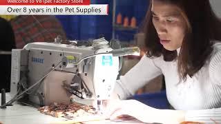 Safety pet supplies - LED Dog collar