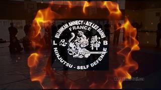12ème Séminaire de Ninjutsu à Annecy 2018 - Vidéo 1