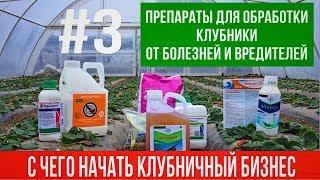 С чего начать клубничный бизнес. #3 Подбор препаратов от вредителей и болезней,а так же удобрения.