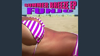 Provided to YouTube by Believe SAS Bienvenidos · Funjc Summer Breeze (Finest Chill House Music) ℗ Funjc Released on: 2013-06-19 Composer: Saccozza ...