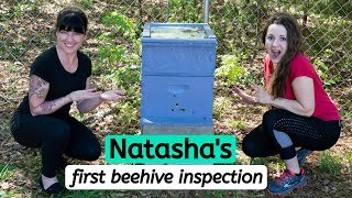 Beekeeping For Beginners --- Natasha's First Beehive Inspection