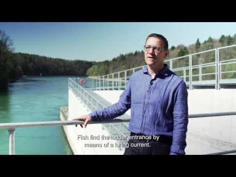 Fish Rise Systems Eglisau-Glattfelden hydro power plant
