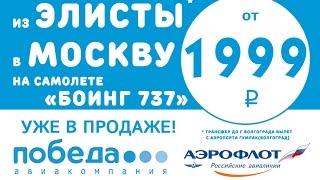 трансфер в аэропорт+перелет в Москву Победа трансфер(Новая бюджетная авиакомпания