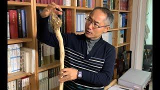 [답사기행 농촌유산] 임원경제지 문화예술 백과사전 이운…