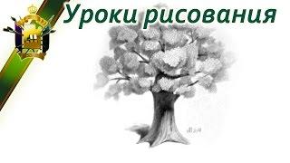 Рисовать карандашом дерево(Рисовать карандашом дерево не так уже и сложно. Посмотрите видео. Также можете посмотреть и другие видео:..., 2014-05-31T17:55:52.000Z)