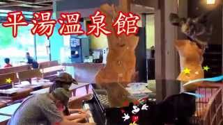 Japan- Nagoya - 名古屋- 高山鄉- 平湯溫泉館-- ( 觀看次數:1,658 次 )-鋼琴聯彈-在日本各都市中排名第四