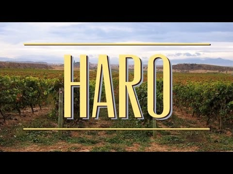 Where to Drink Wine in Haro, La Rioja Spain