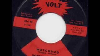 Dorothy Williams - Watchdog.