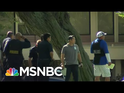 Shooting In Hawaii Leaves Multiple Officers Dead | MSNBC