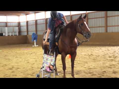 Extreme Horse Obstacle Training
