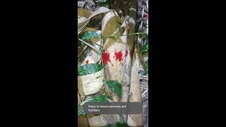 বাশ থেকে লাল রক্তের ফোটা  riju attacking by ghost / ghost hunter investigators