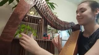 Shotgun - Bristol Harpist
