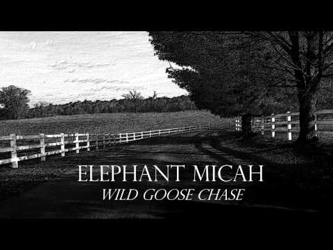 Elephant Micah - Wild Goose Chase