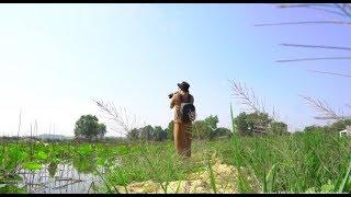Hoa Sen Đất Việt l Đất Việt Media l Nhật Chiếu l Nikon l Sony l Hero 7