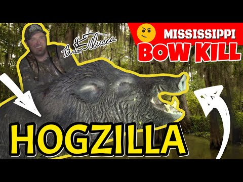MISSISSIPPI HOGZILLA - Pigman Shanks A Monster Boar From 30' High
