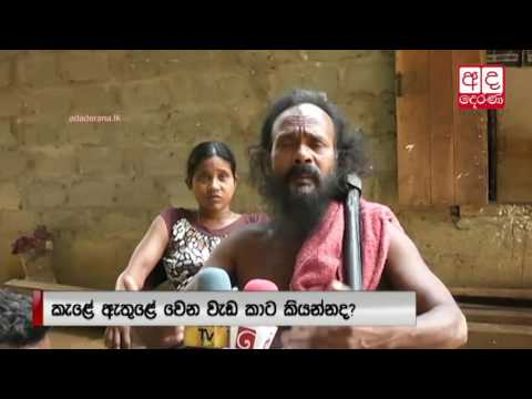 Authorities are not listening to us   Vedda People
