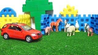 Вместе с машинкой изучаем животных. Видео с игрушками для детей