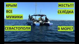 ЖЕСТЬ Все севастопольские мужики вышли в море ловить селедку