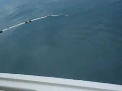 Wreck Fishing offshore Cape May Seabass