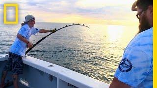 Catch of the Week -Hot Tuna's on Fire | Wicked Tuna