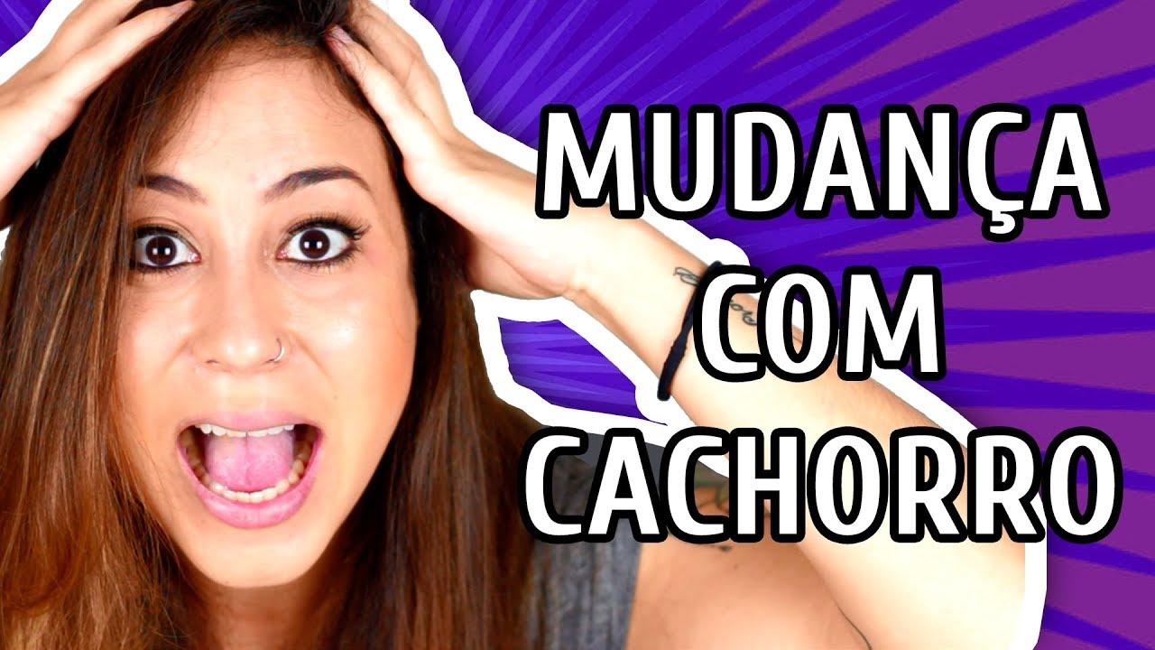 MUDANÇA DE CASA COM AS CACHORRAS: XIXI + ADAPTAÇÃO