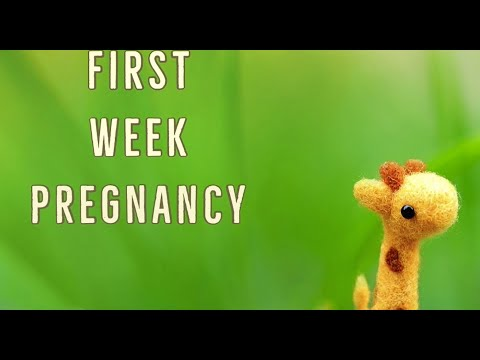First week of Pregnancy - Symptoms, Development, Tips and expectations