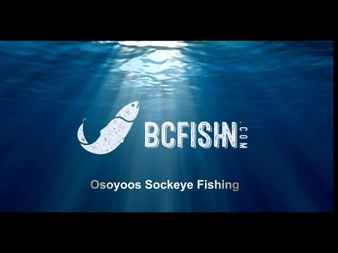 Osoyoos Sockeye Fishing