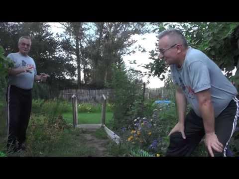 видео: sony vegas pro. Эффект Двойник