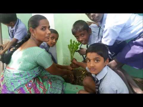 All Saints Elementary School Woraiyur, Trichy - PBL Project