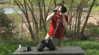 Must-Have Wildlife Photography Gear