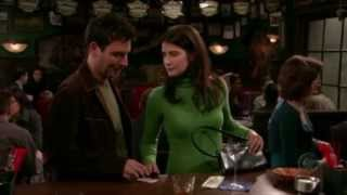 How I Met Your Mother - Ted & Robin