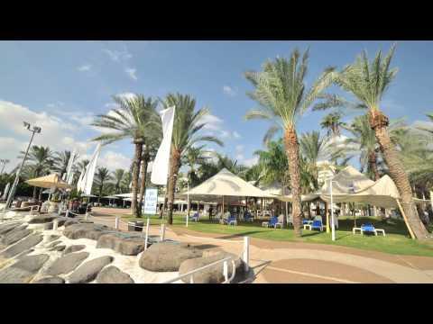 חוף התכלת - סרטון רקע אתר החוף